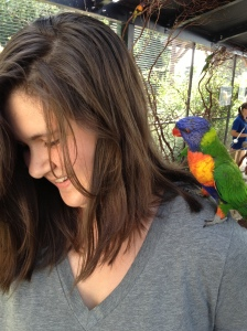 On a family event - feeding parrots